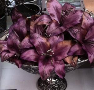 paarse lelies